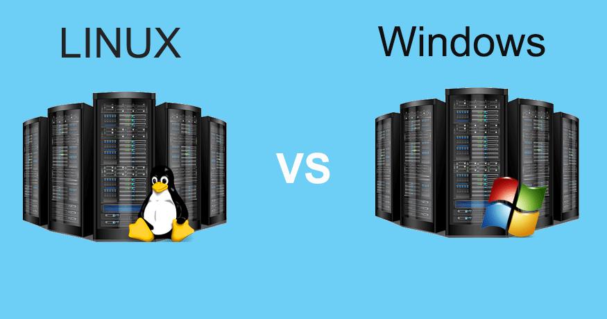 winvslinux - هاست و تفاوت سرور و هاست و رابطه آن با دامین چیست